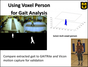 Using Voxel Person for Gait Analysis